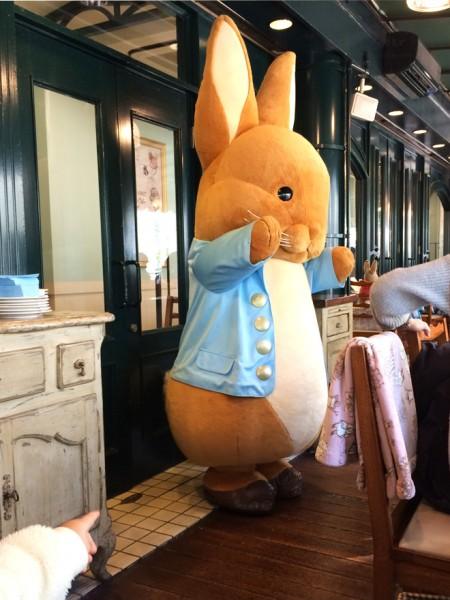 現れる巨大ウサギ